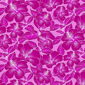 Hibiscus Batik Magenta on Pink 300