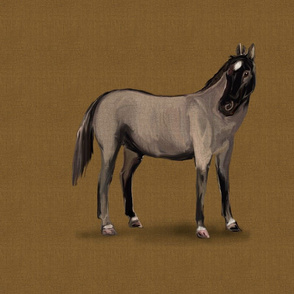 Roan Horse for pillow