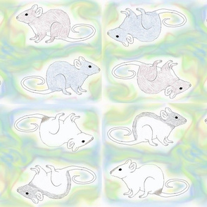 Fancy Rats on a Pastel Background