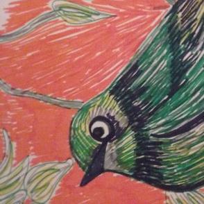 Bird with orange background