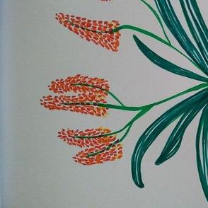 Aloe with orange flowers