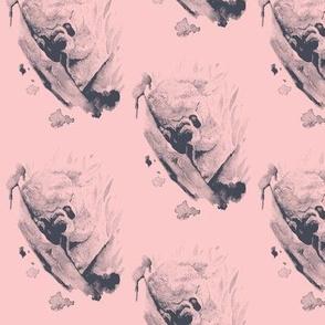 Koala Blush