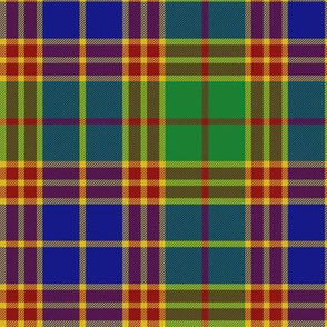 "Stevenson old tartan, 6"" modern colors"