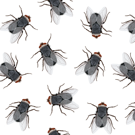 flies fabric by amy_hadden on Spoonflower - custom fabric