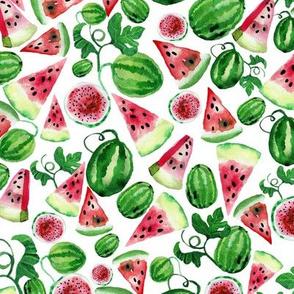 watermelone_pattern