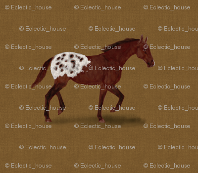 Appaloosa_horse_for_pillow_rev_preview
