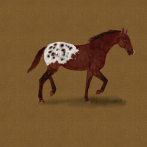 Appaloosa Horse for Pillow