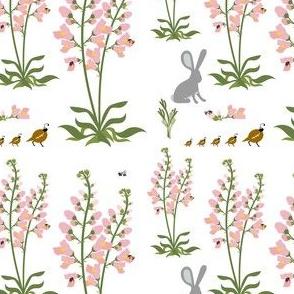 Wildflower, Pink