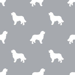 Bernese Mountain Dog silhouette dog breed pattern grey
