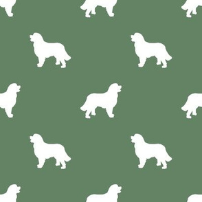 Bernese Mountain Dog silhouette dog breed pattern med green
