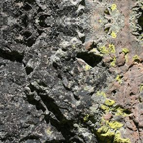 Lichen Boulder II