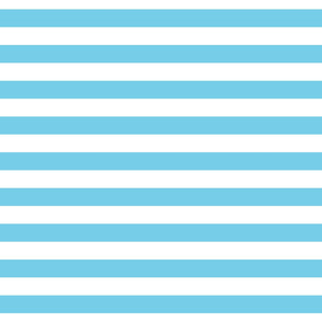Cabana Stripes - Perfect Aqua
