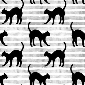 black cats on grey stripes