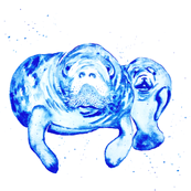 Indigo Manatee Mama and Baby