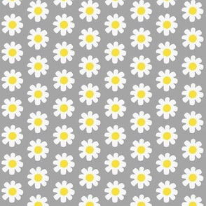 Sassy Summer Smiles-daisy grey/yellow