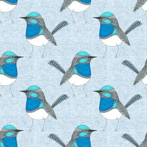 Bright Blue Wren Pattern