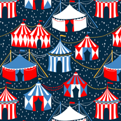 Circus under the Stars