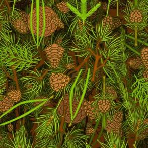 Pines 1
