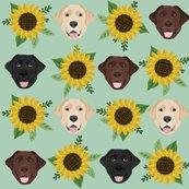 Rlabrador_sunflowers_3_shop_thumb