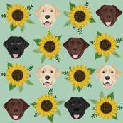 labrador fabric mini print sunflower fabric  dogs and flowers design