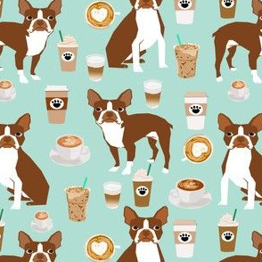 Boston Terrier Coffee red coat mint