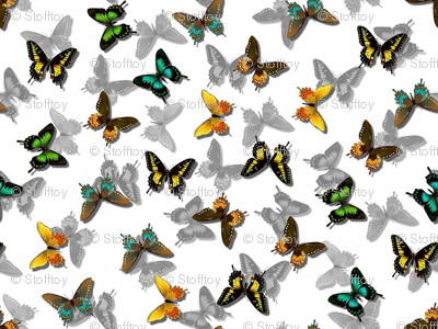 more butterflies