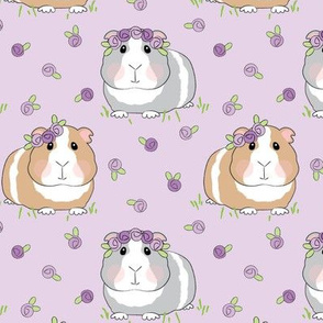 large guinea-pigs-with-lavender roses