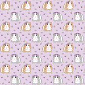 tiny guinea-pigs-with-roses-larger-lavender