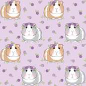 medium guinea-pigs-with-roses-larger-lavender