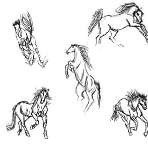 Equine Gestures BW