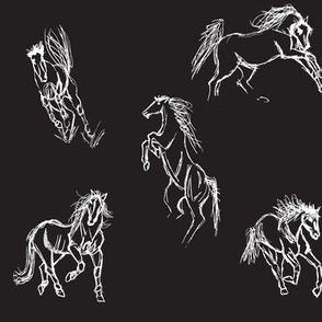 Equine Gestures WB