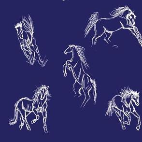 Equine Gestures Night Sky