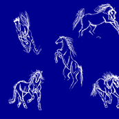 Equine Gestures Night Sky