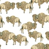 Rsofter_buffalo_herd_shop_thumb