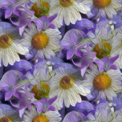 fluffy flowers - painted