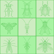 Green Bug Tile Grid