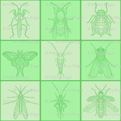 Green Bug Tile Grid