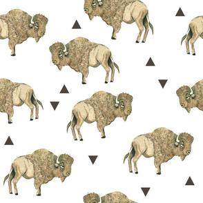 Buffalo 3 Herd + Triangles