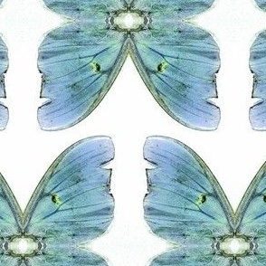 Blue Green Butterfly sewindigo