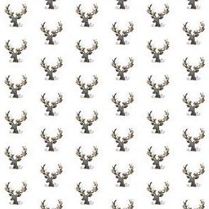 "1"" Autumn Deer / White"
