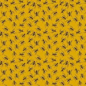 Tiny Ants on Mustard
