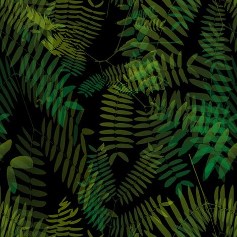 Mimosoideae05_black fabric by schymik on Spoonflower - custom fabric