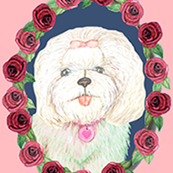 dog cameo / watercolor roses