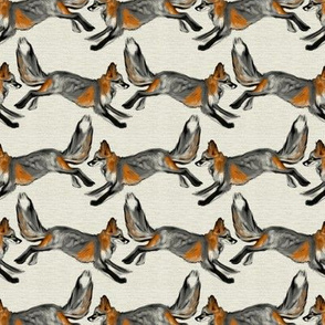 Running Cross Foxes