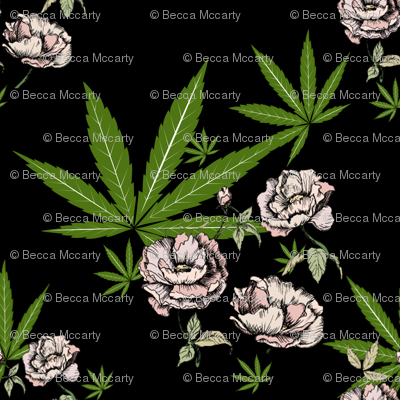 Cannababe Cannabis Floral