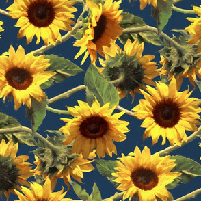 Sunflowers on Dark Blue Rotated