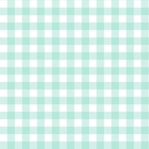 mint plaid design
