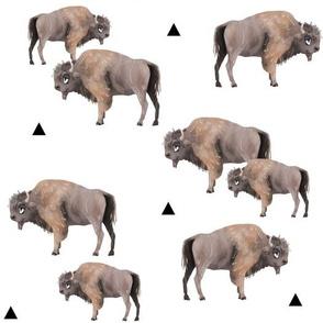 Sample Buffalo Herd + Triangles