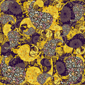 Floral Roses Paisley 3