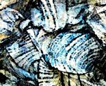 Papier_aqua_blauw_ed_thumb